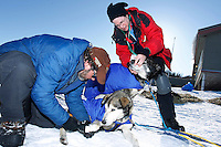 Veterinarian Elizabet King examines a Bruce Linton dog as Bruce removes the dog's booties shortly after is arrival at the Shageluk village checkpoint during the 2011 Iditarod race..