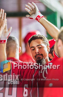 22 August 2015: Washington Nationals infielder Anthony Rendon returns to the dugout after hitting a solo home run against the Milwaukee Brewers at Nationals Park in Washington, DC. The Nationals defeated the Brewers 6-1 in the second game of their 3-game weekend series. Mandatory Credit: Ed Wolfstein Photo *** RAW (NEF) Image File Available ***