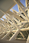 Prince Felipe Science Museum, The Arts and Science City by Calatrava, Valencia, Spain