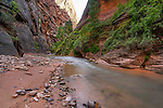 The Narrows and the Virgin River in Zion National Park, Utah, USA