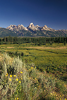 Teton Mountains, Grand Teton National Park, Jackson Hole, WY, Wyoming, Picturesque view of the Grand Teton Mountains from a scenic overlook in Grand Teton Nat'l Park in Wyoming.