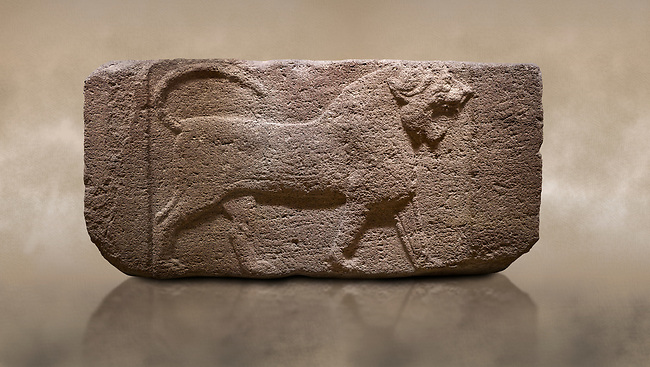 Photo of Phygian relief sculpted orthostat stone panel. Andesite, Etimesgut, Ankara. Phrygian. 1200-700 BC. Anatolian Civilisations Museum, Ankara, Turkey.<br /> <br /> Figure of a roaring lion. The cross mark on the chest draws attention. The muscles in his legs are schematic. There are frame edges in front and behind the lion. <br /> <br /> Against a brown art background.