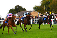 Winner of The Bathwick Car & Van Hire Novice Auction StakesN over J (nearside) ridden by Adam Beschizza and trained by William Knight during Bathwick Tyres Reduced Admission Race Day at Salisbury Racecourse on 9th October 2017