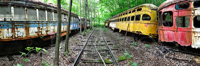 Trolleys abandoned in a transportation graveyard in the green leafy woods of early summer. Pittsburgh PCC cars on the right; New York City on the left.