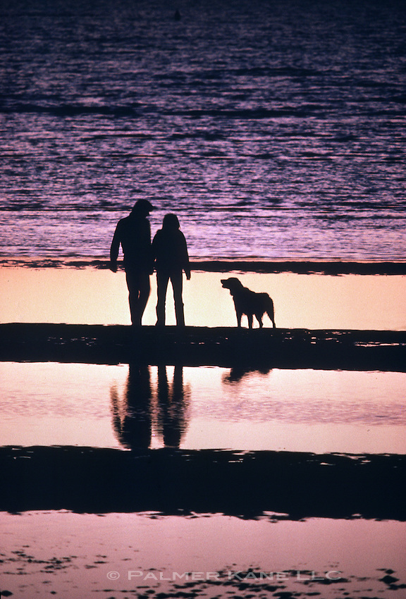 Silhouette of couple standing on beach with their dog at sunset