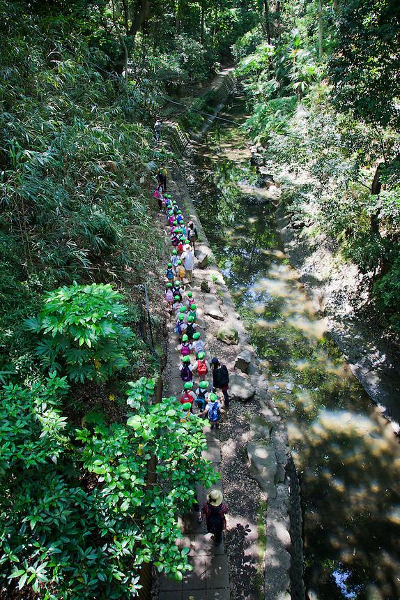 A column of school children descend into Tokyo`s Todoroki Valley on a field trip.