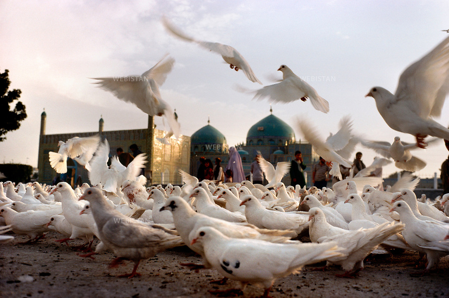Afghanistan, Mazar-e Charif, 1990<br /> The town of Mazar-e-Sharif in Afghanistan is the most important pilgrimage center in the country. Afghans believe it to be the tomb of Ali and the place is filled with white pigeons. In 1990, one year after the retreat of the Soviet troops from Afghanistan, the second phase of the war ravaged the country. The country, already ravaged by a decade of Soviet incursions, had also been considerably weakened by the civil strife between various warlords and ethnic groups (1989&ndash;1992). This photograph was shot while Reza was working as a consultant for the United Nations. Over the course of nine months, he hiked over remote mountains, through the provinces of Badakhshan, Takhar, Baglan, and Kunduz, trying to make peace a priority in the village chieftains&rsquo; negotiations. Nevertheless, his camera remained to hand to bear witness to this chaotic period.<br /> Afghanistan, Mazar-e Charif, 1990<br /> Mazar-e-Sharif est le lieu de p&egrave;lerinage le plus important du pays. Les Afghans croient que le sanctuaire est le tombeau d&rsquo;Ali. Les pigeons blancs ont envahi la place devant la mosqu&eacute;e. En 1990, un an apr&egrave;s le retrait des troupes sovi&eacute;tiques d&rsquo;Afghanistan, la deuxi&egrave;me phase de la guerre secoue le pays.<br /> La guerre civile en Afghanistan entre diff&eacute;rents seigneurs de guerre et ethnies (1989-1992) affaiblit consid&eacute;rablement le pays, d&eacute;j&agrave; min&eacute; par 10 ans d'invasions de l'Union Sovi&eacute;tique. Photographie prise par Reza alors consultant pour les Nations Unies. Pendant 9 mois, il arpente les montagnes recul&eacute;es, dans les provinces de  Badakhshan, Takhar, Baglan, Kunduz, tentant de placer la paix au coeur des n&eacute;gociations entre les chefs de villages. Pourtant, son appareil est toujours &agrave; port&eacute;e de main, tel le t&eacute;moin d&rsquo;une &eacute;poque chaotique.