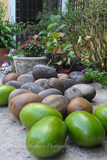 Higuera fruits.