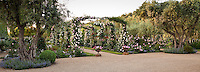 Panoramic view of rose covered trellis entry into California wine county garden flanked by ancient olive trees