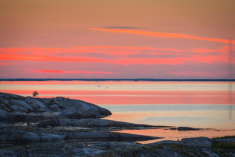 Röda moln i solnedgången vid Kallskär i Stockholms ytterskärgård.