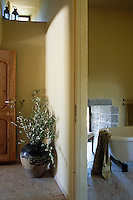 A large ceramic pot filled with olive branches stands in the corner of this sunny corridor with a view into the bathroom