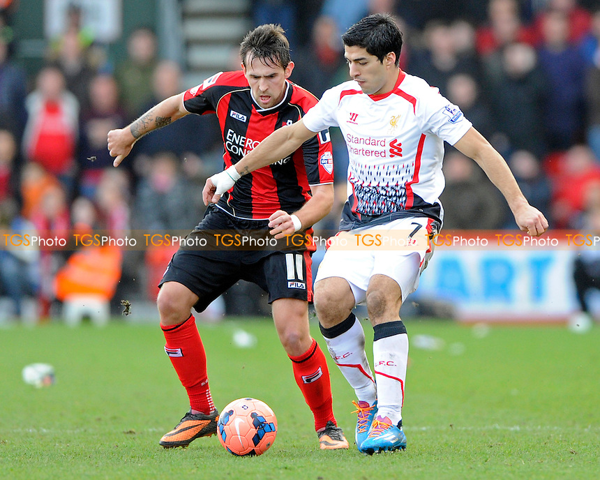 Luis Su?rez of Liverpool holds off Charlie Daniels of AFC Bournemouth - AFC Bournemouth vs Liverpool - FA Cup 4th Round Football at the Goldsands Stadium, Bournemouth, Dorset - 25/01/14 - MANDATORY CREDIT: Denis Murphy/TGSPHOTO - Self billing applies where appropriate - 0845 094 6026 - contact@tgsphoto.co.uk - NO UNPAID USE