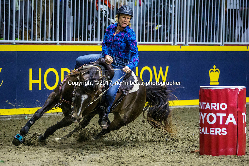 Royal Rodeo action at the Royal Agricultural Winter Fair in Toronto, Ontario, Canada<br /> <br /> 12 November, 2017