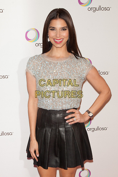 NEW YORK, NY -  FEBRUARY 26: Roselyn Sanchez attends the Nueva Latina campaign launch at Helen Mills Event Space on February 26, 2014 in New York City.  <br /> CAP/MPI/COR<br /> &copy;Corredor99/ MediaPunch/Capital Pictures