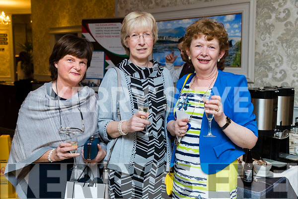 Kathleen O'Mahony, Sheila Hobbert and Cornelia Casey at the 'Rose Rocks For Sudan' Charity Dinner in Aid of Sudan at the Rose Hotel on Sunday night.