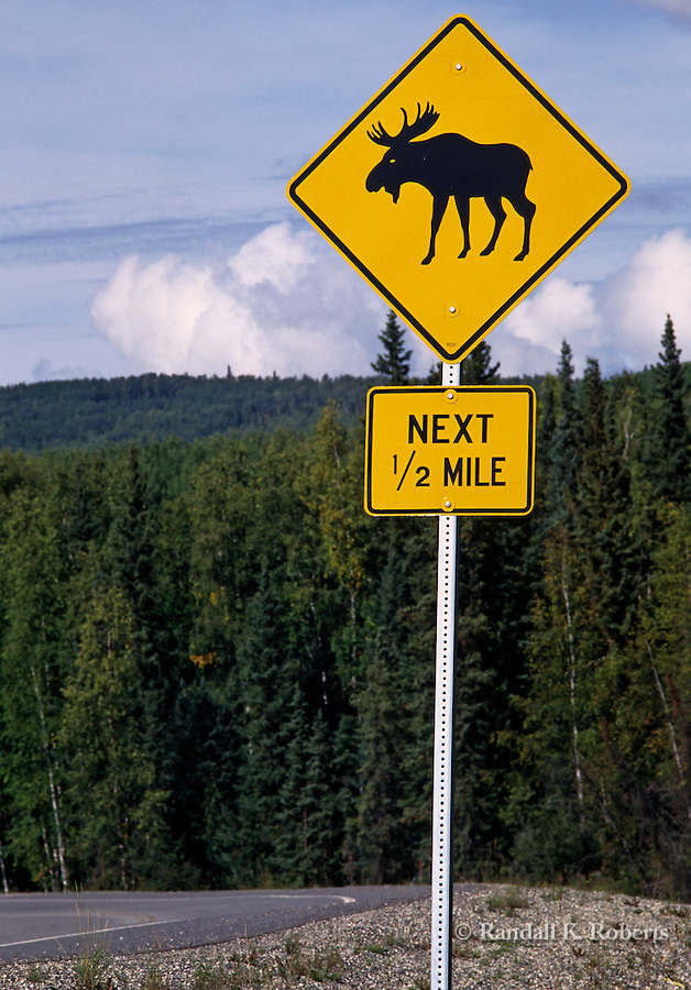 A sign warns motorists about moose crossing the road near Glacier National Park, Montana.