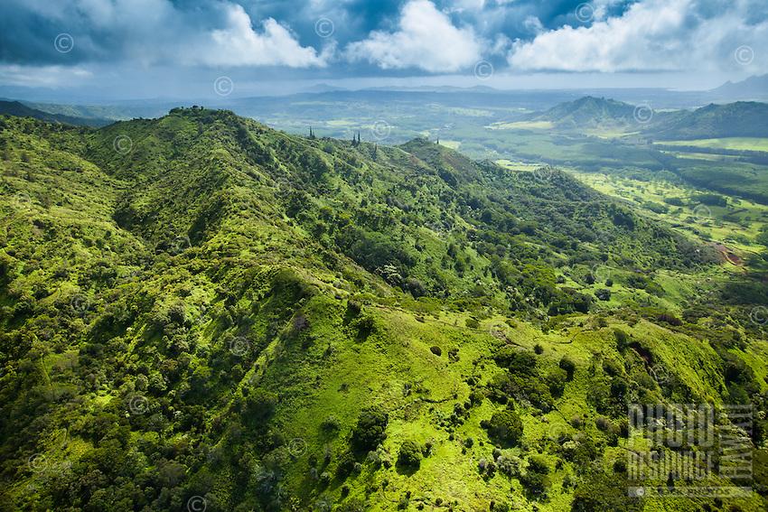 An aerial view of lush hiking trails through Kaua'i.