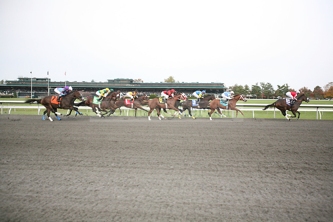 Horses race down the backstretch during the seventh race at Keeneland racetrack in Lexington, Ky., on Sunday, Oct. 23, 2011. Photo by Tessa Lighty | Staff