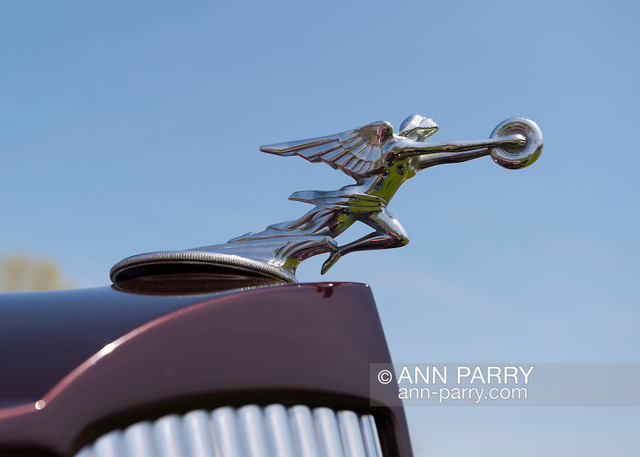 April 28, 2013 - Floral Park, New York, U.S. -  This winged female hood ornament, seen closeup, is on the Burgandy 1936 Packard 8 Victoria convertible, belonging to Jim Barnes of Bayside, at the Antique Auto Show, where New York Antique Auto Club members exhibited their cars on the farmhouse grounds of Queens County Farm Museum.