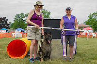 Up and Over Agility May 28 to 29 2015 Hamburg NY