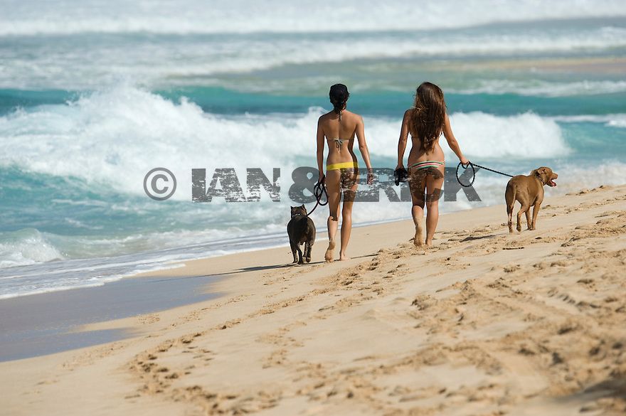 Calli Wagner walking on the beach at Backdoor on the Northshore of Oahu in Hawaii.