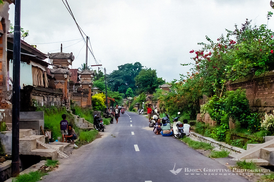 Bali, Gianyar, Ubud. A traditional village in the northern part of Ubud. Every home is surrounded by high walls, inside there can be many smaller buildings, including a family temple.