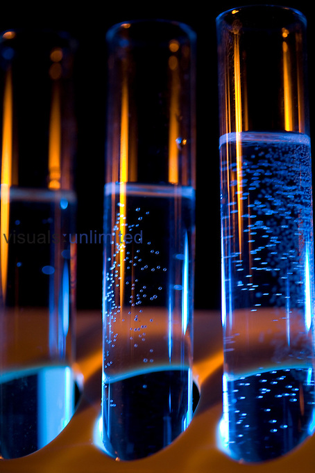 A row of test tubes against a lit blue background. Royalty Free