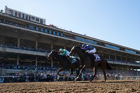 DEL MAR, CA - NOVEMBER 04: Bar of Gold #5, ridden by Irad Ortiz Jr., and Ami's Mesa #14, ridden by Luis Contreras, battle on the finish line during Breeders' Cup Filly & Mare Sprint on Day 2 of the 2017 Breeders' Cup World Championships at Del Mar Thoroughbred Club on November 4, 2017 in Del Mar, California. (Photo by Alex Evers/Eclipse Sportswire/Breeders Cup)
