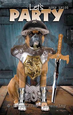 Samantha, ANIMALS,  photos,+dogs,++++,AUKPLP100,#A# Humor, lustig, divertido