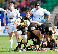 Northampton, England. Martin Roberts of Northampton Saints clears the ball during the Heineken Cup Pool 4 match between Northampton Saints and Glasgow Warriors at Franklin's Gardens on October 14, 2012 in Northampton, England.