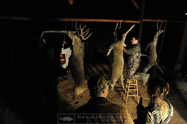 DEER HUNTING..5G ranch Stonewall County Texas.Skinning, field dressing deer at camp