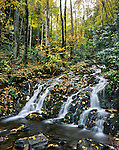 Waterfall And Autumn Foliage, Great Smoky Mountains National Park, Tennessee