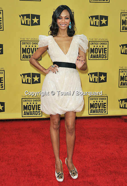 Zoe Saldana _170  -<br /> 15th Annual Critics' Choice Movie Awards  at the Hollywood Palladium in Los Angeles.