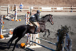 Pacific Ridge Pony Club's Halloween Show