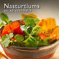 Nasturtiums | Nasturtium Food Pictures, Photos & Images