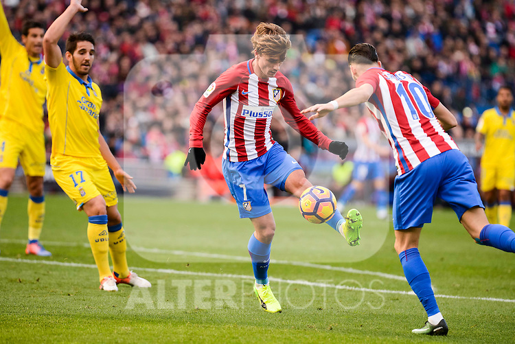 Atletico de Madrid Antoine Griezmann and Yannick Carrasco and UD Las Palmas Pedro Bigas during La Liga match between Atletico de Madrid and UD Las Palmas at Vicente Calderon Stadium in Madrid, Spain. December 17, 2016. (ALTERPHOTOS/BorjaB.Hojas)