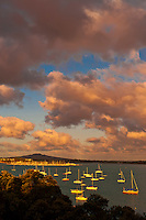 A jetty at Northcote Point, Auckland, New Zealand