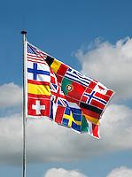 Vlag heeft een print van vlaggen uit diverse landen