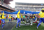 24 JUN 2010: The FIFA flag is walked onto the field. The Slovakia National Team defeated the Italy National Team 3-2 at Ellis Park Stadium in Johannesburg, South Africa in a 2010 FIFA World Cup Group F match.