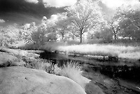 Llano River and trees in infrared.<br /> <br /> Nikon F3HP, 24mm lens, Kodak High Speed infrared film, red filter