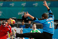 15.01.2013 World Championshio Handball. Match between Algeria vs Egypt (24-24) at the stadium La Caja Magica. The picture show Omar Moheyeldin Aly Elswaidy (Wing of Egypt)