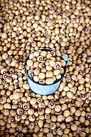 Black-eyed Peas in the market at Kasane, Botswana