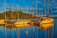 Sailboats at sunset, Parc national de la Pointe-Taillon, Quebec, Canada