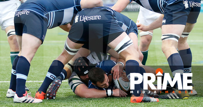 Ealing's Alexander Penney gets hands on with Bedford's Jordan Burns during the Greene King IPA Championship match between Ealing Trailfinders and Bedford Blues at Castle Bar , West Ealing , England  on 29 October 2016. Photo by Carlton Myrie / PRiME Media