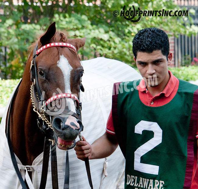 Cabo Time before The Sweet and Sassy Stakes at Delaware Park on 7/20/13