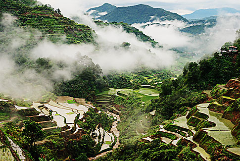 Banaue Rice Terraces, Ifugao - Philippines