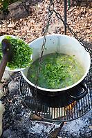 Kräutersuppe über Lagerfeuer, Suppe aus Kräutern, Wildgemüse, Kräuter, Feuer, Outdoor, soup, Feuerstelle, Campen, fire, bonfire, campfire, camping