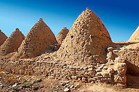 "Pictures of the beehive adobe buildings of Harran, south west Anatolia, Turkey.  Harran was a major ancient city in Upper Mesopotamia whose site is near the modern village of Altınbaşak, Turkey, 24 miles (44 kilometers) southeast of Şanlıurfa. The location is in a district of Şanlıurfa Province that is also named ""Harran"". Harran is famous for its traditional 'beehive' adobe houses, constructed entirely without wood. The design of these makes them cool inside. 46"