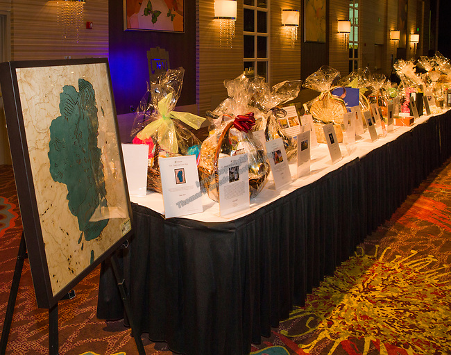 Auction items on display during the Big Chefs Big Gala benefit for the Big Brothers Big Sisters at the Grand Sierra Resort in Reno, NV on Saturday, April 21, 2018.