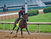 Orb, trained by Shug McGaughey, works out in preparation for the Kentucky Derby at Churchill Downs on April 29, 2013.